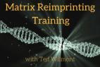 Matrix Reimprinting using EFT Practitioner Training Course