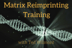 Matrix Reimprinting Training with Ted Wilmont using EFT Tapping