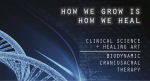 Maitri Studio, BDCT, biodynamic craniosacral therapy, clinic