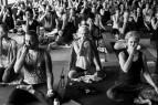 Maitri Studio, Belfast, Steven Coville, jivamuki yoga, Sharon Gannon, chakras