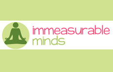 Mindfulness northern ireland, Meditation northern ireland, Stress Reduction northern ireland, 1-1 therapy, immeasurable minds